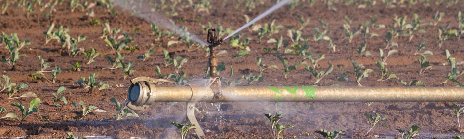 Recycled Water Pump Irrigation Livestock