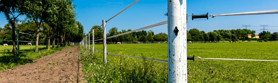 Electric Fencing Energisers Livestock